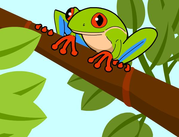 frogs brainpop jr